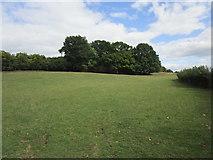 SO7334 : Grass field near Clencher's Mill by Jonathan Thacker