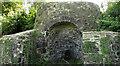 SX8458 : Limekiln, Hoyle Copse by Derek Harper