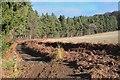 NT6425 : Fieldside path to Peniel Heugh by Jim Barton