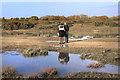 SU4964 : Walkers on the Runway by Des Blenkinsopp