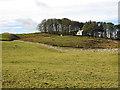 NY8639 : Farmland below Ullsfield Plantation by Mike Quinn