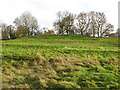 NZ0119 : The site of Cotherstone Castle (2) by Mike Quinn