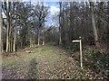 SU9126 : Path Junction by Chris Thomas-Atkin