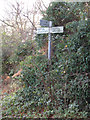 TG5100 : Signpost on Hall Road by Adrian Cable