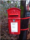 SU9319 : George VI postbox on Graffham Common by Basher Eyre