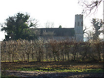 TM4899 : St.Mary's Church, Ashby by Adrian Cable