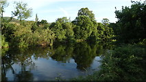 S2122 : R Suir, E of Clonmel by Colin Park