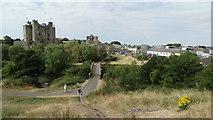 N8056 : Trim Castle & Millennium Bridge by Colin Park
