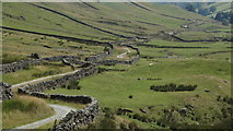NY4807 : Track along the upper part of Longsleddale by Colin Park