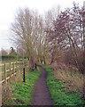 TL7206 : Saffron Trail Footpath near River Chelmer, Springfield, Chelmsford by Roger Jones
