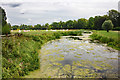 SJ9822 : The River Sow at Shugborough Park by Jeff Buck