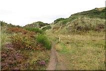 NJ1570 : Coast path, Clashach Cove by Richard Webb