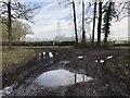 SU9924 : Track Junction by Chris Thomas-Atkin