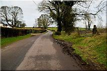 H5956 : Muddy along Glenhoy Road by Kenneth  Allen