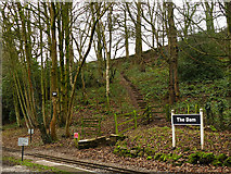 SJ9558 : Steps up from Dam station, LRR by Stephen Craven