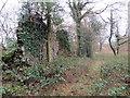 SN6318 : Anedd-dy adfeiliedig / A ruinous abode by Alan Richards