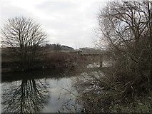 SK4799 : The River Don and Railway Bridge by Jonathan Thacker