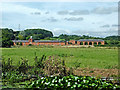 SJ9823 : Canalside pasture north-east of Tixall in Staffordshire by Roger  Kidd