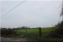 TQ4894 : Field entrance on Manor Road, Lambourne End by David Howard