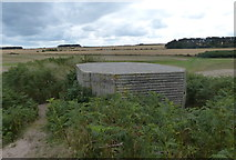 NU2422 : WWII pillbox in the dunes at Embleton Bay by Mat Fascione