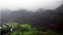 SN7078 : Coed Pant-mawr viewed from Coed Dol-fawr by John Lucas
