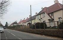 TQ4696 : Hoe Lane, Abridge by David Howard