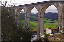 SX4368 : Calstock Viaduct by Stephen McKay