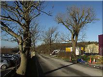 SE2853 : Crag Lane by Derek Harper