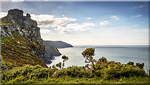 SS7049 : Valley Of The Rocks by James Johnstone