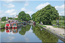 SJ8512 : Canal east of Wheaton Aston in Staffordshire by Roger  Kidd