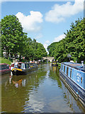 SJ8512 : Shropshire Union Canal by Wheaton Aston in Staffordshire by Roger  Kidd
