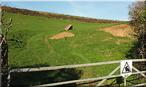 SX7667 : Pasture near Higher Penn by Derek Harper