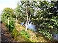 SJ1043 : River Dee - Afon Dyfrdwy by Gerald England