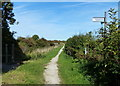 SK6636 : Towpath along the disused Grantham Canal by Mat Fascione