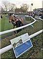 TL2072 : Distances Jargon Buster - Huntingdon Racecourse by Richard Humphrey