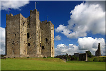 N8056 : Castles of Leinster: Trim, Meath (4) by Mike Searle