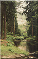 NU0702 : Cragside from the woodland walk by Malcolm Neal