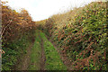 SX7643 : Green lane to Duncombe Cross by Derek Harper