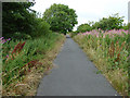 NS3040 : Cycle path at Irvine by Thomas Nugent
