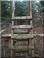 TL8192 : Ladder with warning by David Pashley