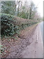 SJ2484 : Telegraph Road and Thurstaston Recreation Ground boundary stone #1 by John S Turner