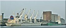 "J3576 : ""Kotor"" and ""Arklow Marsh"", Belfast harbour (January 2019) by Albert Bridge"