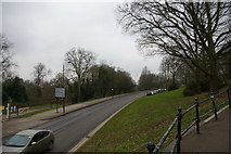 TQ3090 : South Terrace: road towards Alexandra Palace from the east by Christopher Hilton