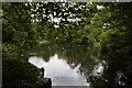 O1633 : Lake, St Stephen's Green by N Chadwick