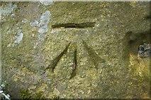 SE2648 : Cut Bench Mark, Merrybank Lane Gatepost by Mark Anderson