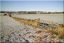 SE2648 : Frosty Fields off Merrybank Lane by Mark Anderson