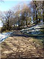 SK2680 : Path by Burbage Brook by Graham Hogg