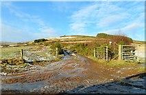 NJ5504 : Blelack Hill Footpath by Stanley Howe