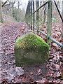SJ2485 : National Trust boundary stone (2) on Thurstaston Common by John S Turner
