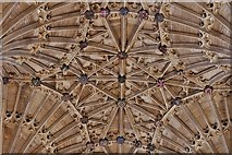 ST6316 : Sherborne Abbey: Fan vaulting detail 6 by Michael Garlick